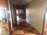 thumb_7517_img7968329da46d358173d2deb65011cc8av.jpg