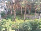 thumb_7528_p80616191509.jpg