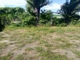 thumb_8640_p90618155639.jpg