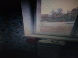 thumb_9200_p91008192006.jpg