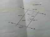 thumb_9214_p910171206401.jpg