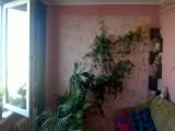 thumb_9957_img178590b349f97aec2dd4f3157d4eac55v.jpg